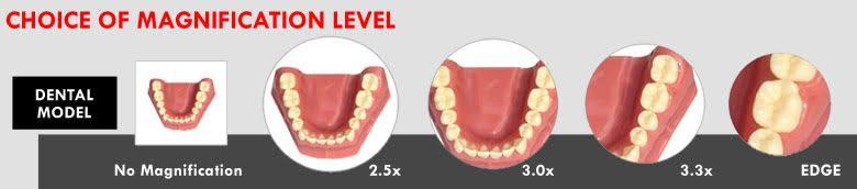 dental-loupe